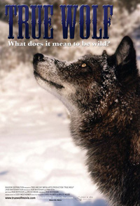True Wolf Poster Review