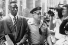 The Central Park Five | Review