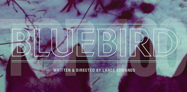 Top 100 Most Anticipated Films of 2013: #75. Lance Edmands' Bluebird