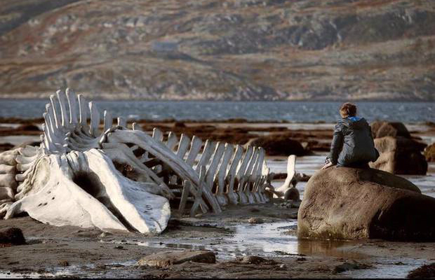 Leviathan Andrey Zvyagintsev Cannes Review