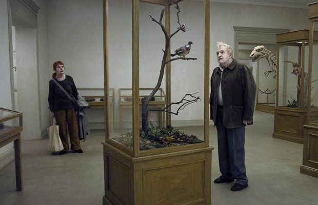 A-Pigeon-Sat-on-a-Branch-Reflecting-on-Existence-review