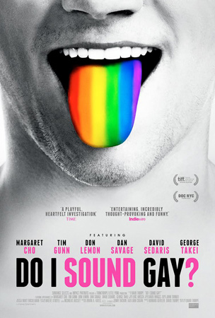 do-i-sound-gay-poster