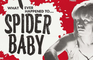 spider-baby-review