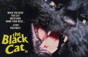 Black Cats Blu-Ray Review