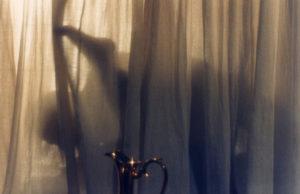 Walerian Borowczyk Immoral Tales
