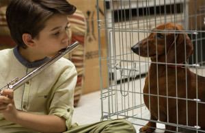 Wiener-Dog Review