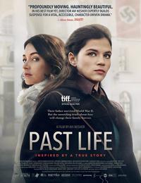 Avi Nesher Past Life Poster