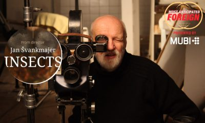 Jan Svankmajer The Insects